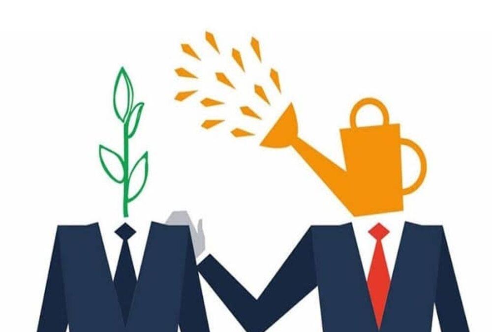 Pasos para desarrollar habilidad como mentor en la supervisión.